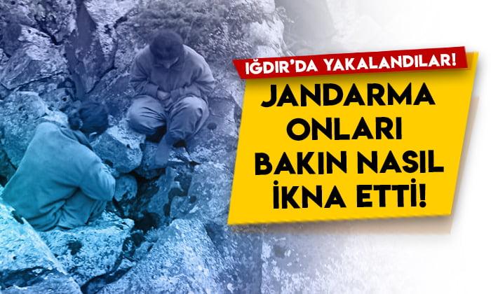 Iğdır'da yakalandılar! Jandarma onları bakın nasıl ikna etti