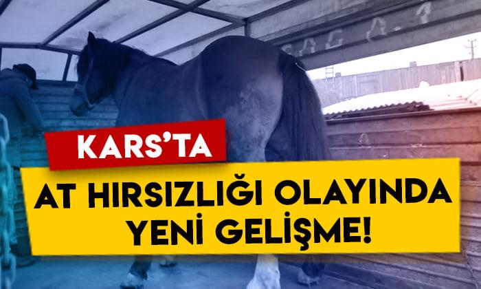 Kars'ta at hırsızlığı olayında yeni gelişme!