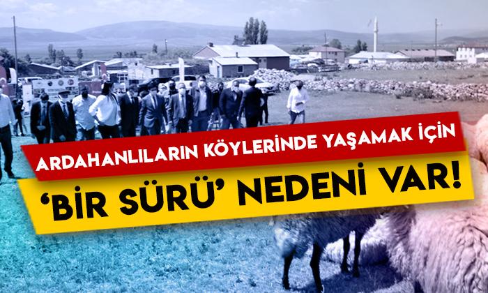 Ardahanlıların köylerinde yaşamak için 'bir sürü' nedeni var!